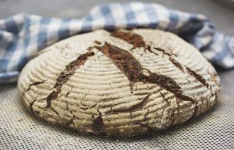 Brothaus Moberg Brot